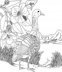 Barbie of Swan Lake Coloring Pages 6