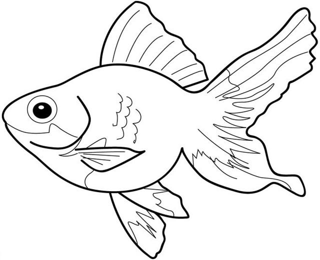 fish coloring pages coloring fish. Black Bedroom Furniture Sets. Home Design Ideas