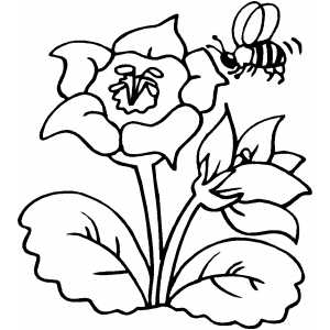 Printable Flower Coloring Pages 3