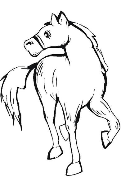 Horse Coloring Pages 1