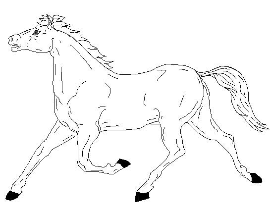 Horse Coloring Pages 8