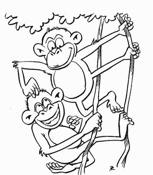 Monkey Coloring Pages 3