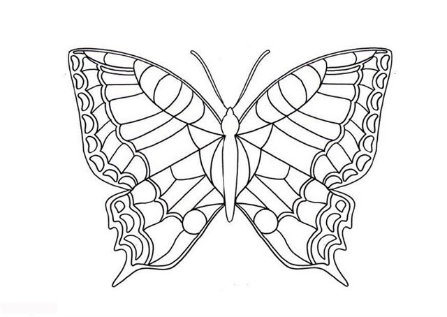 Butterfly Coloring Pages 11