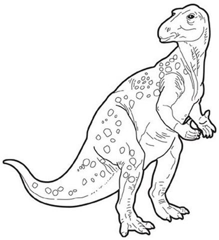 Dinosaur Coloring Pages 35