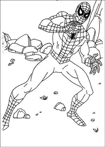Spiderman Coloring Pages 8