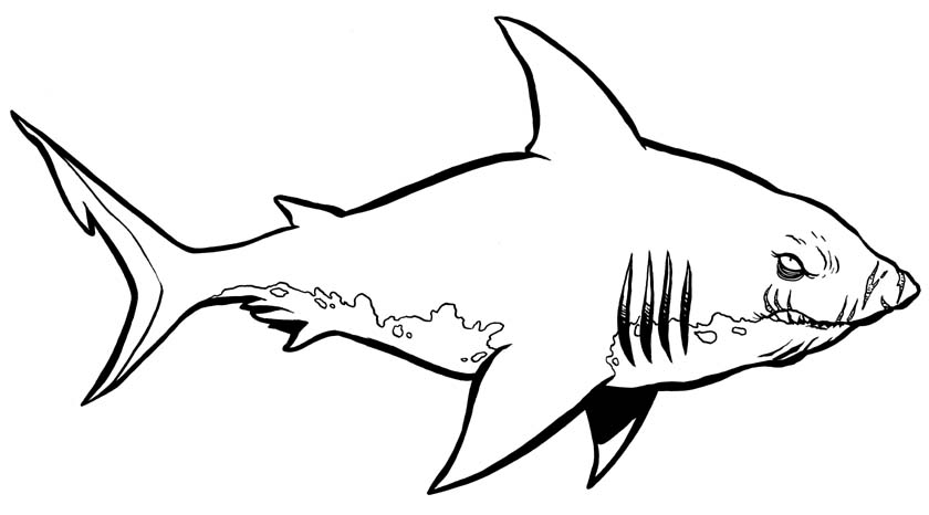 Emejing Coloring Pages Sharks Print Ideas New Printable Coloring